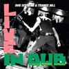 Couverture de l'album Live in Dub