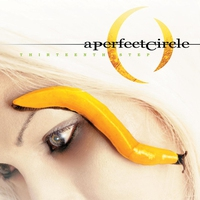 Cover of the track Thirteenth Step