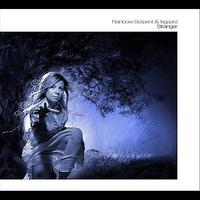 Cover of the track Stranger