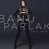 Cover of the album Narin Yarim - Single