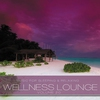 Couverture de l'album Wellness Lounge, Vol. 20