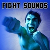 Cover of the album Fight Sound Effects