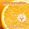 Couverture de l'album Progressive PsyTrance, Vol.3 (The Collection of Finest Psytrance and Goatrance)