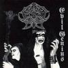 Couverture de l'album Evil Genius