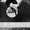 Couverture de l'album Fake Palms