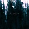 Cover of the album Blossom
