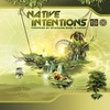 Couverture de l'album Native Intentions