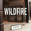 Couverture du titre Wildfire (DJ Rex)