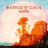 Couverture de l'album Apollo