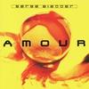 Couverture de l'album Amour