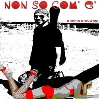 Cover of the track Non So Com'è