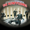Cover of the album Have I the Right - The Very Best of the Honeycombs