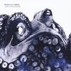 Cover of the album Every Ocean Reversed