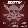 Couverture de l'album The Black Pearl (Remixes, Pt. II)