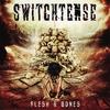 Cover of the album Flesh & Bones