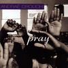 Couverture de l'album Pray