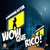 Couverture de l'album Wow Que Rico - Single