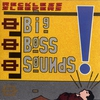 Cover of the album Big Boss Sounds