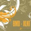 Couverture de l'album XLNT - EP