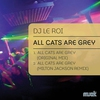 Couverture de l'album All Cats Are Grey - Single