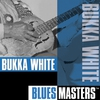 Cover of the album Blues Masters: Bukka White