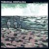 Couverture de l'album Terminal Nostalgia