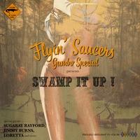 Couverture du titre Swamp It Up!