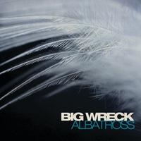 Cover of the track Albatross - Single