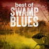 Cover of the album Best of Swamp Blues