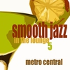 Couverture de l'album Smooth Jazz In the Lounge, Vol. 5