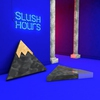 Couverture de l'album Slush Hours