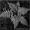 Cover of the album Confluencias I: Selva
