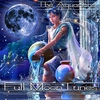 Couverture de l'album Full Moon Tunes