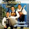 Couverture de l'album Verliebte Harmonika