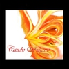 Cover of the album Phoenix