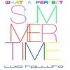 Couverture de l'album What a Perfect Summertime - Single