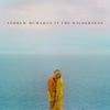 Cover of the album Andrew McMahon In The Wilderness