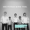 Cover of the album See Piinab Mind Veel - Single