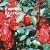 Cover of the album Empire Records - EP