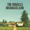 Couverture de l'album Disgraceland