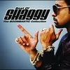 Couverture de l'album The Boombastic Collection: Best of Shaggy