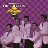 Couverture de l'album Cameo Parkway: The Best of the Dovells, 1961-1965