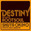 Cover of the album DESTINY replayed by ROOT SOUL