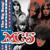 Couverture de l'album The Big Bang: The Best of the MC5