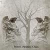 Couverture de l'album Beauty. Darkness. Chaos.