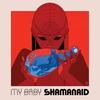Cover of the album Shamanaid