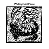 Couverture de l'album Widespread Panic