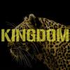 Couverture de l'album Kingdom - Single