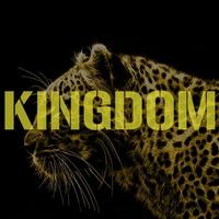 Couverture du titre Kingdom - Single