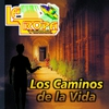 Cover of the album Los Caminos de la Vida